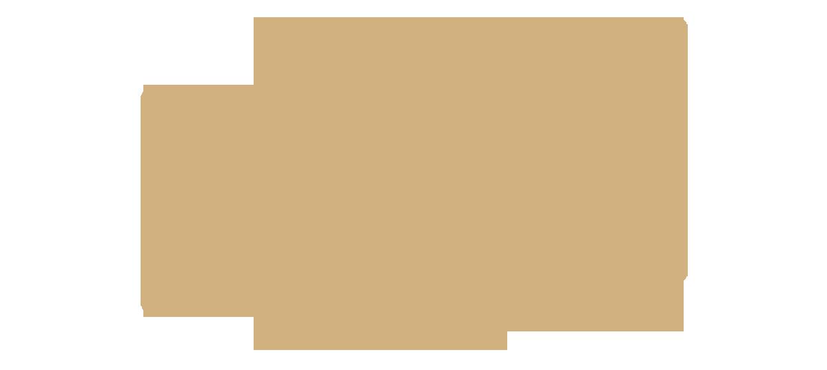 Auto Glass Website Design & Development Service